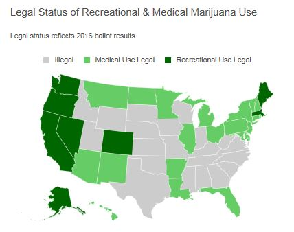 the legitimate and medical use of marijuana Despite a federal ban, many states allow use of medical marijuana to treat pain, nausea and other symptoms medical marijuana is marijuana used to treat disease or relieve symptoms marijuana is made from the dried leaves and buds of the cannabis sativa plant it can be smoked, inhaled or ingested in food or tea.